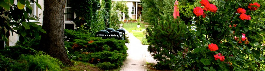 Pension Margit in Baden - Der Garten